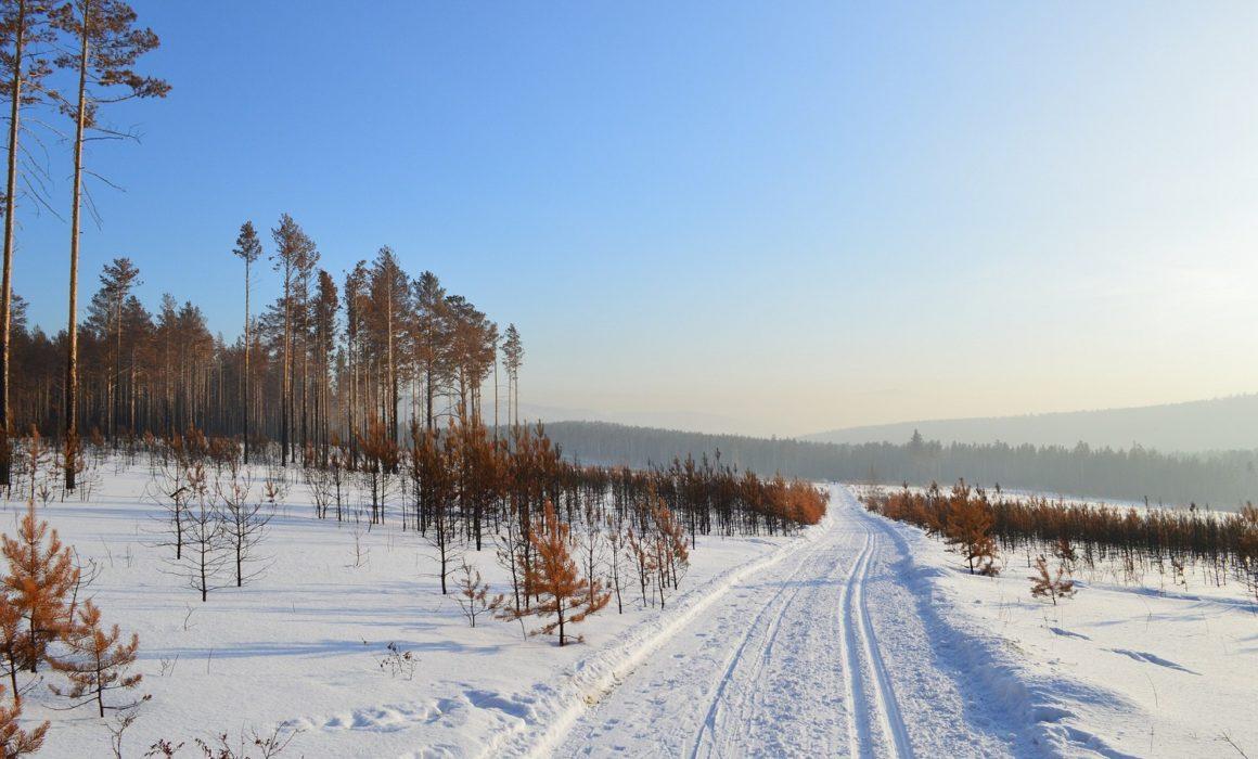 シベリアの力/ Power of Siberia